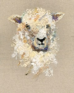 Cotswold Sheep #14
